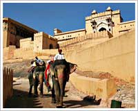 amber-fort-jaipur-tour