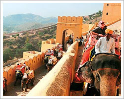 amer-fort-elephant-safari