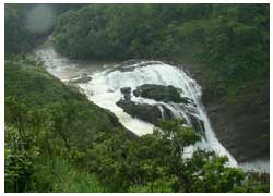 coorg trips