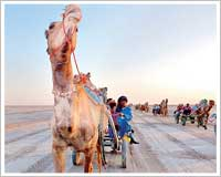 jeep safari Rann of Kutch