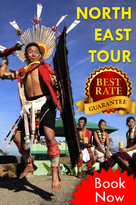 north-east-tour-package