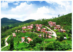 ooty tours-package